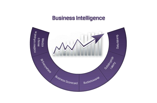 Comarch-ERP-Altum-business-intelligence